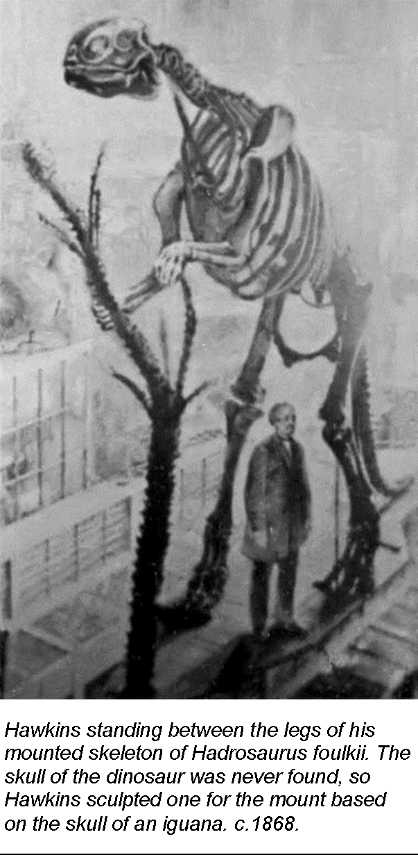Hawkins standing between the legs of his mounted skeleton of Hadrosaurus foulkii. The skull of the dinosaur was never found, so Hawkins sculpted one for the mount based on the skull of an iguana. c.1868.