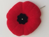 red poppy used for remembrance day. It has a pin through it.