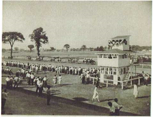Stamford Park showing the home stretch of the race track